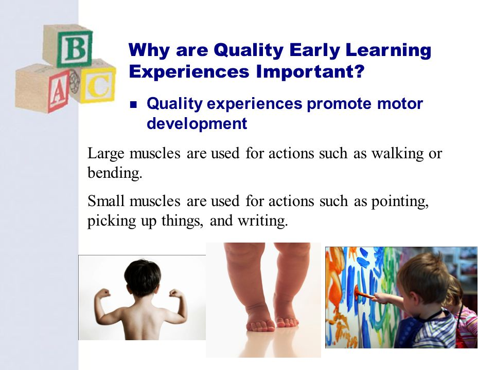 15 Why are Quality Early Learning Experiences Important? Quality experiences promote motor development Large muscles are used for actions such as walk
