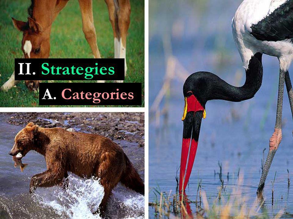 II. Strategies A. Categories