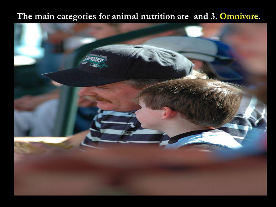 The main categories for animal nutrition areand 3. Omnivore.