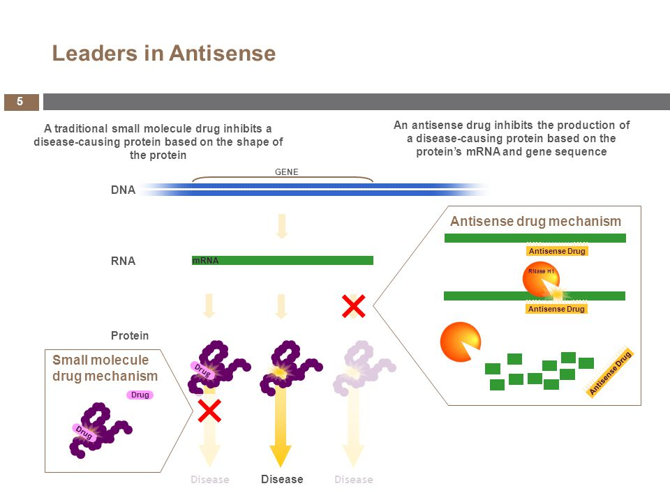 KYNAMRO TM : First Systemically Delivered Antisense Drug Approved in the US FOCUS FH phase III study to support label expansion in the US and possible EU approval Constantly Maturing Pipeline Nine drugs with Phase 2 or Phase 3 data expected in 2013/early 2014 Two to three Phase 3 programs initiating in 2013/early 2014 Five drugs with launch potential by 2017/2018 Expanding Portfolio of Drugs and Therapeutic Areas Four new drugs in development over the last 12 months for a total of 28 Growing severe, rare and orphan disease program Leader in Antisense Technology Continued improvements in the potency and side effect profile Over 1,500 patents protecting the portfolio Partnerships Validating the Platform, Complementing Isis Expertise and Ensuring Financial Strength Five new collaborations in the last year and a half, three in the last six months alone, bringing in $126mm in upfront payments and over $2.5bn in total potential value (AstraZeneca, Biogen Idec and Roche) Isis Today 4