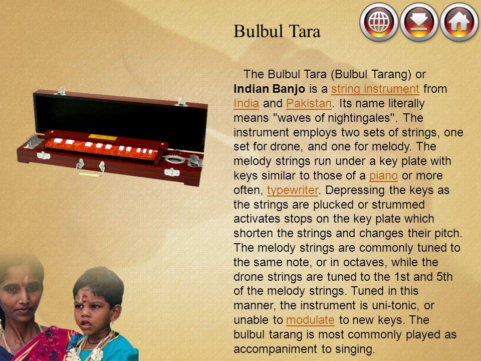 Bulbul Tara The Bulbul Tara (Bulbul Tarang) or Indian Banjo is a string instrument from India and Pakistan. Its name literally means
