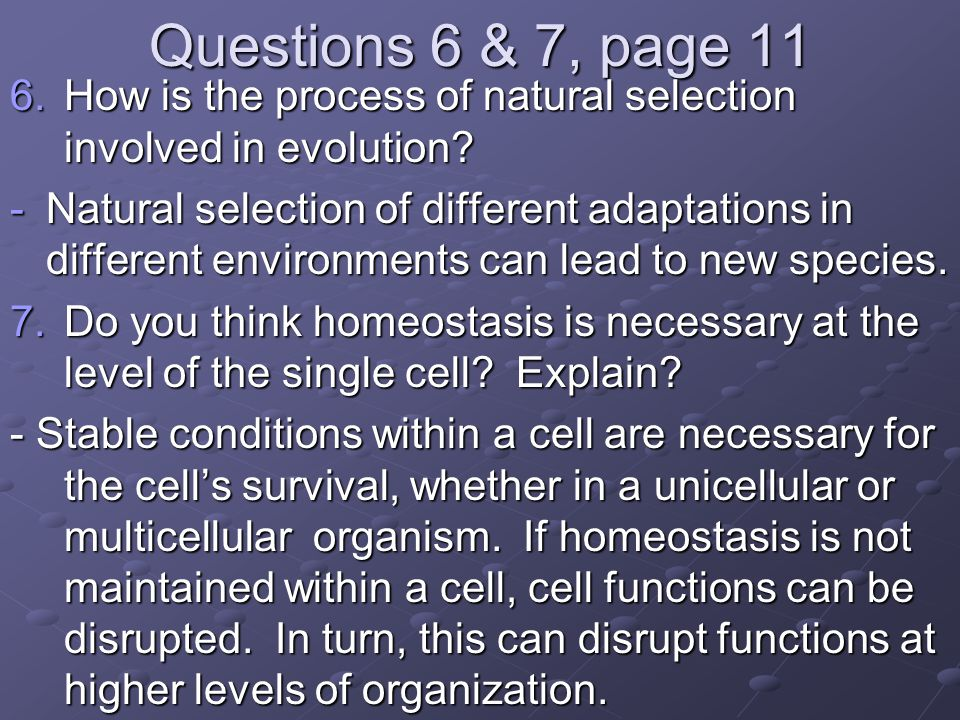 Questions 6 & 7, page 11 6.How is the process of natural selection involved in evolution? -Natural selection of different adaptations in different env