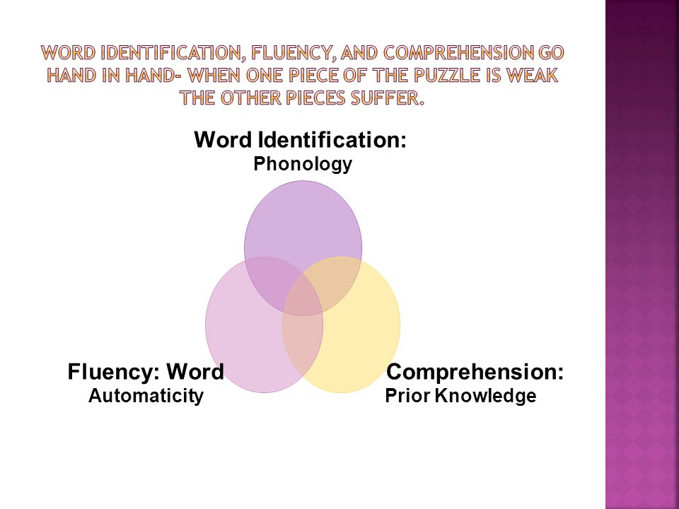 Word Identification: Phonology Comprehension: Prior Knowledge Fluency: Word Automaticity