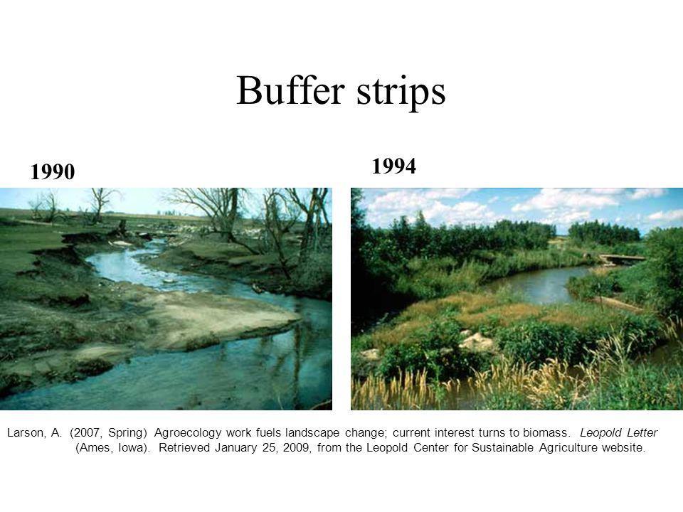 Buffer strips Larson, A.