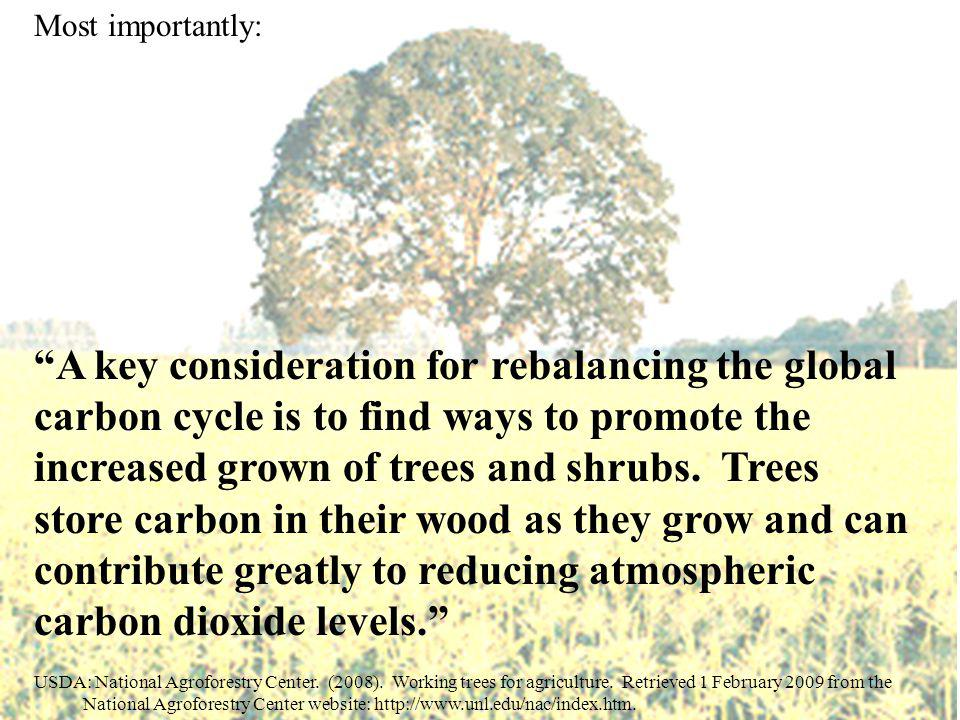 USDA: National Agroforestry Center. (2008). Working trees for agriculture.