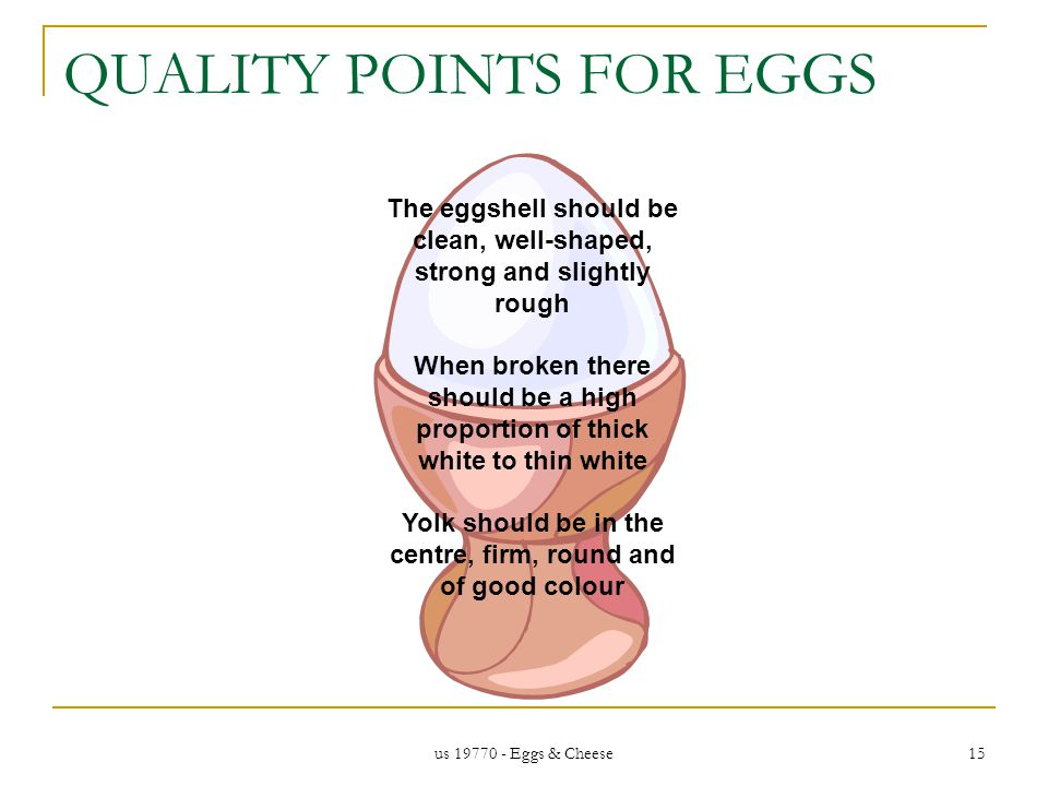 us 19770 - Eggs & Cheese 15 QUALITY POINTS FOR EGGS The eggshell should be clean, well-shaped, strong and slightly rough When broken there should be a high proportion of thick white to thin white Yolk should be in the centre, firm, round and of good colour