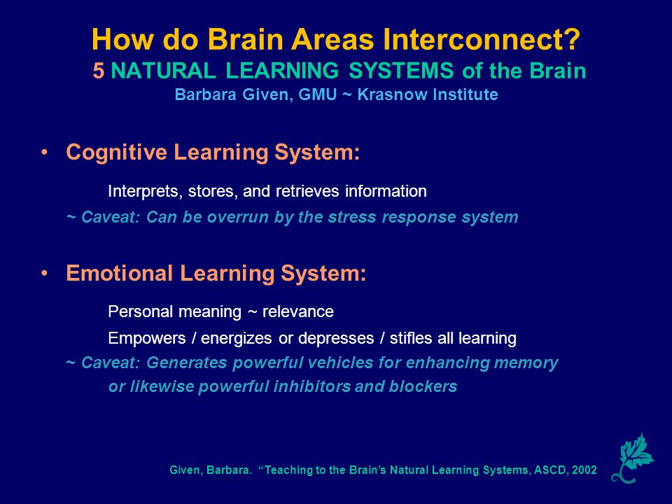 How do Brain Areas Interconnect.