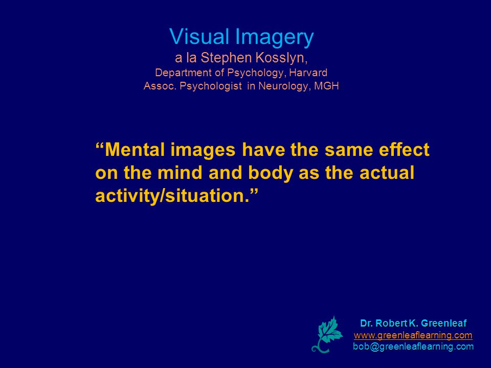 Visual Imagery a la Stephen Kosslyn, Department of Psychology, Harvard Assoc.