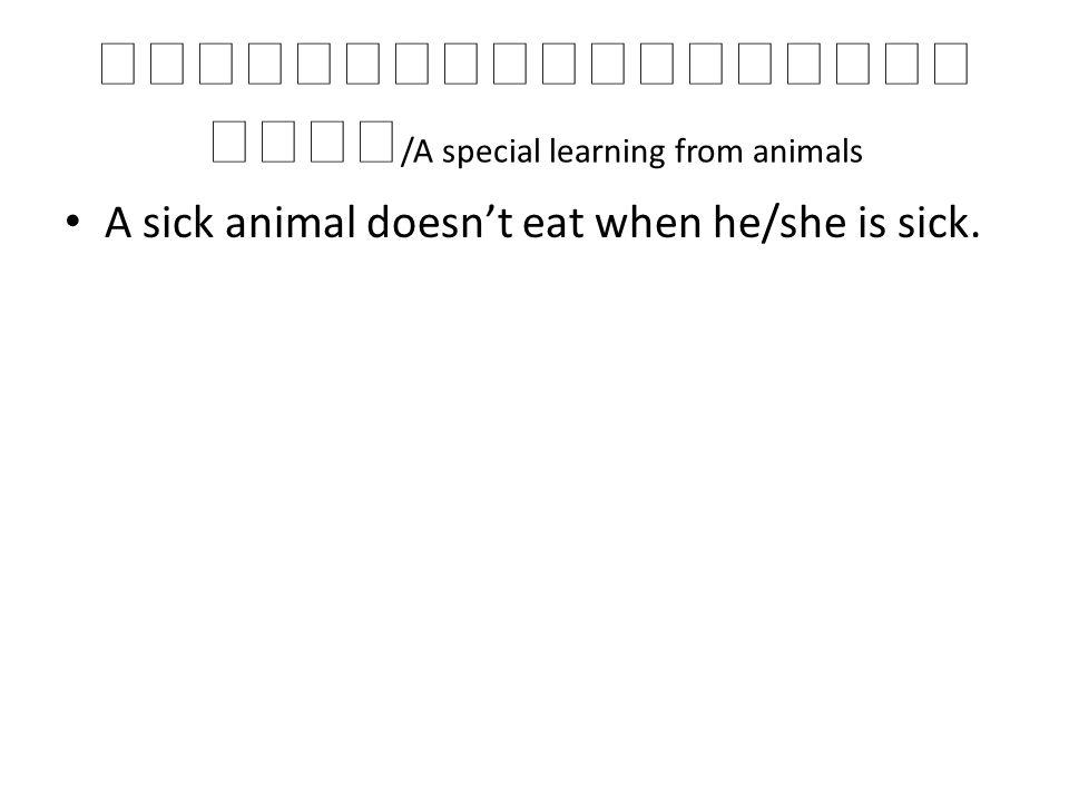 /A special learning from animals A sick animal doesnt eat when he/she is sick.