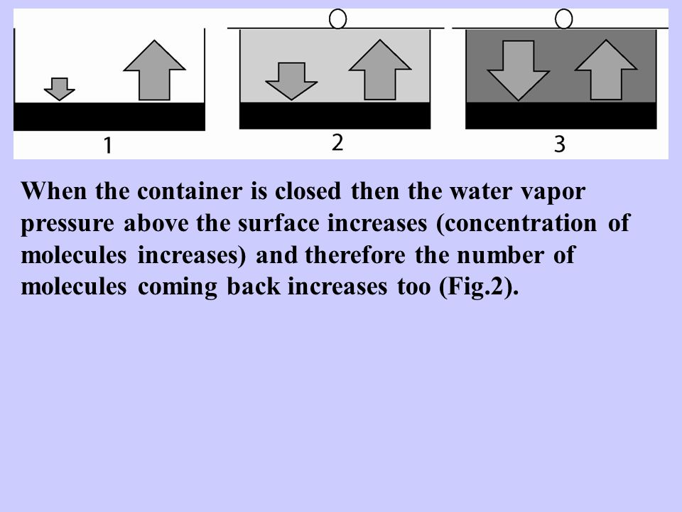 When the container is closed then the water vapor pressure above the surface increases (concentration of molecules increases) and therefore the number of molecules coming back increases too (Fig.2).