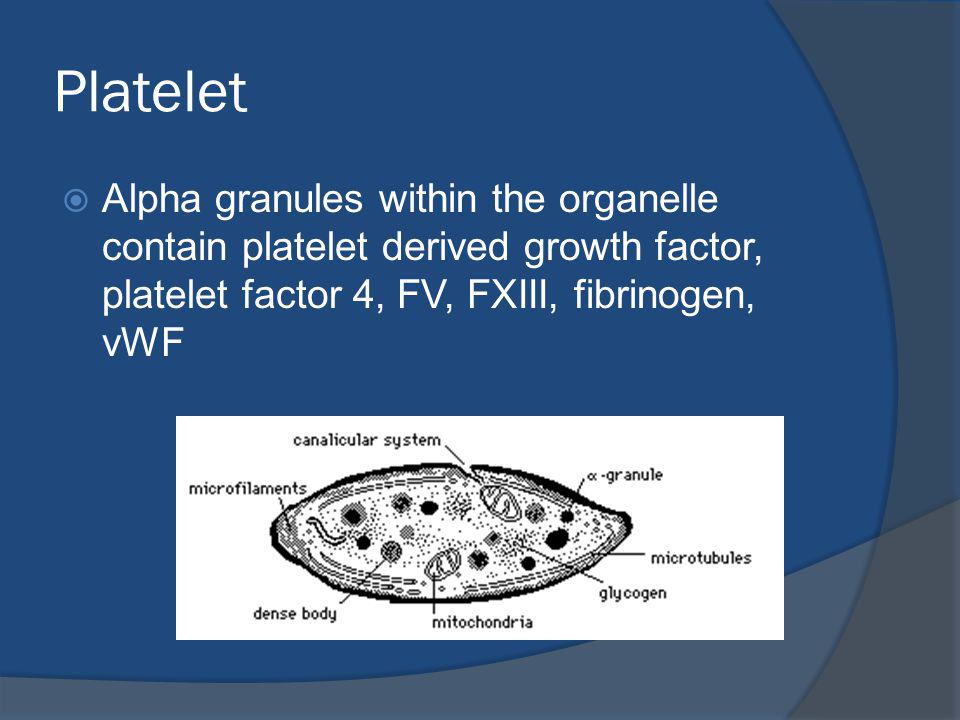 Platelet Alpha granules within the organelle contain platelet derived growth factor, platelet factor 4, FV, FXIII, fibrinogen, vWF