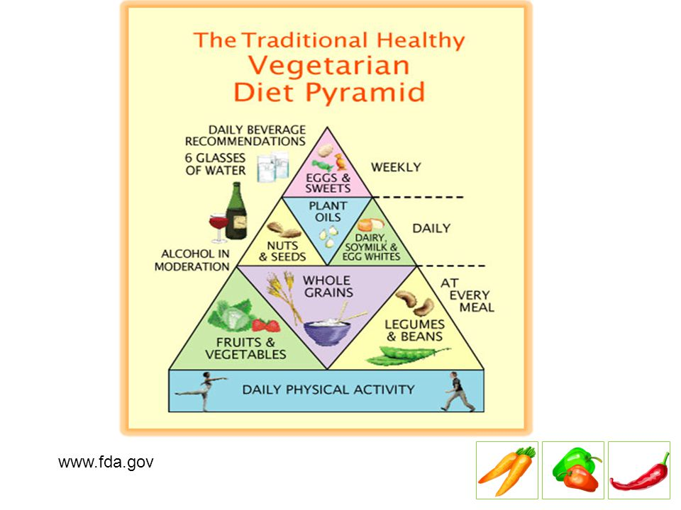 Nutrition Concerns Vitamin B 12 Omega-3 Fatty Acids Vitamin D Calcium Iron Zinc Protein