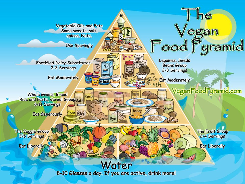 Nutrition Concerns Protein – Vegetarian diets are low in high quality proteins (those containing all of the essential amino acids) – Use fortified meat replacements and textured vegetable proteins – Use complementary proteins