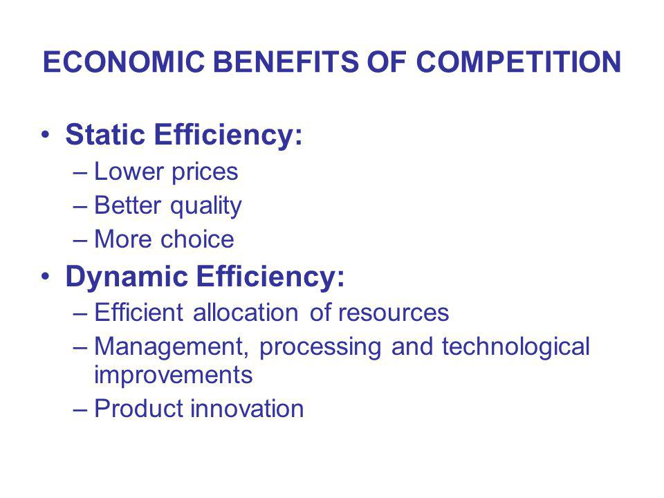 ECONOMIC BENEFITS OF COMPETITION Static Efficiency: –Lower prices –Better quality –More choice Dynamic Efficiency: –Efficient allocation of resources –Management, processing and technological improvements –Product innovation