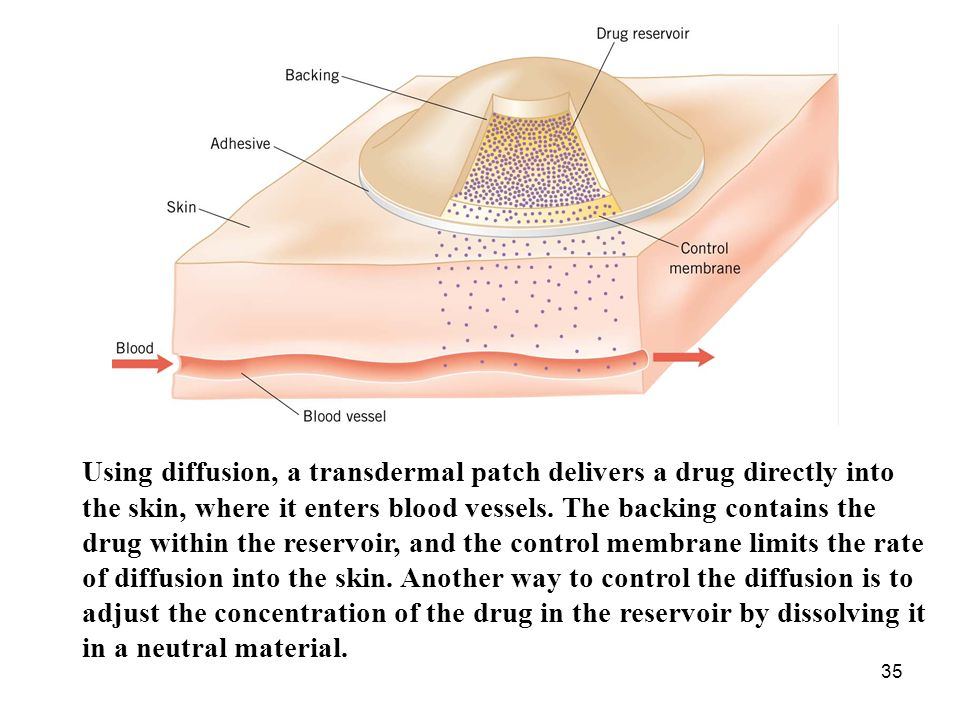 35 Using diffusion, a transdermal patch delivers a drug directly into the skin, where it enters blood vessels.