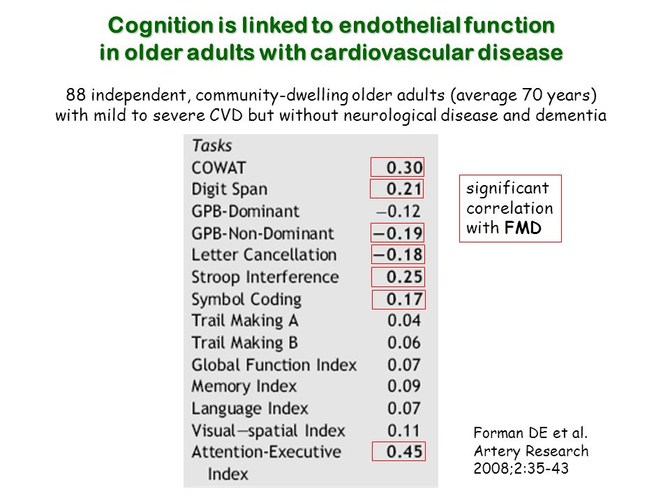 Cognition is linked to endothelial function in older adults with cardiovascular disease 88 independent, community-dwelling older adults (average 70 ye