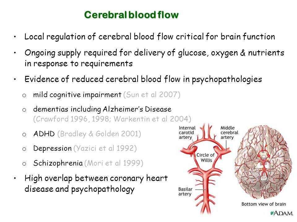 Cerebral blood flow Local regulation of cerebral blood flow critical for brain function Ongoing supply required for delivery of glucose, oxygen & nutr