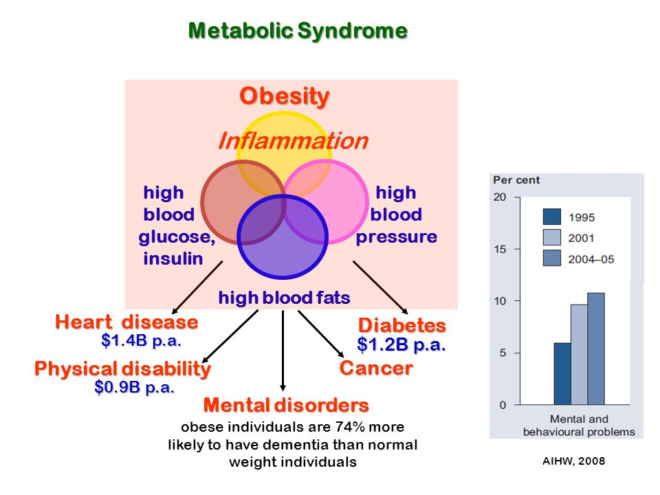 Metabolic Syndrome Obesity high blood pressure high blood fats high blood glucose, insulin Heart disease Mental disorders Physical disability obese in