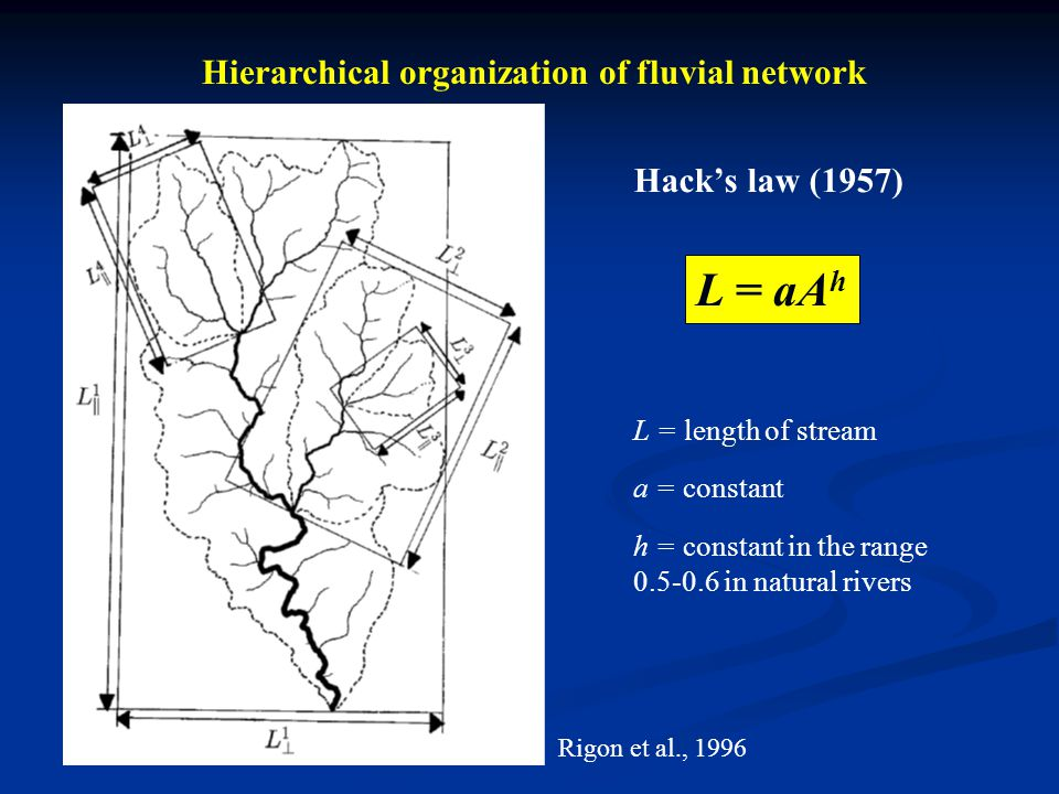 Hierarchical organization of fluvial network Response to active tectonics Galy, 1999