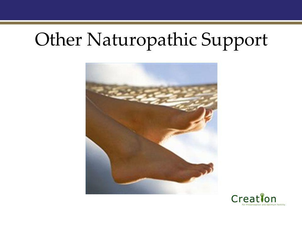 Other Naturopathic Support