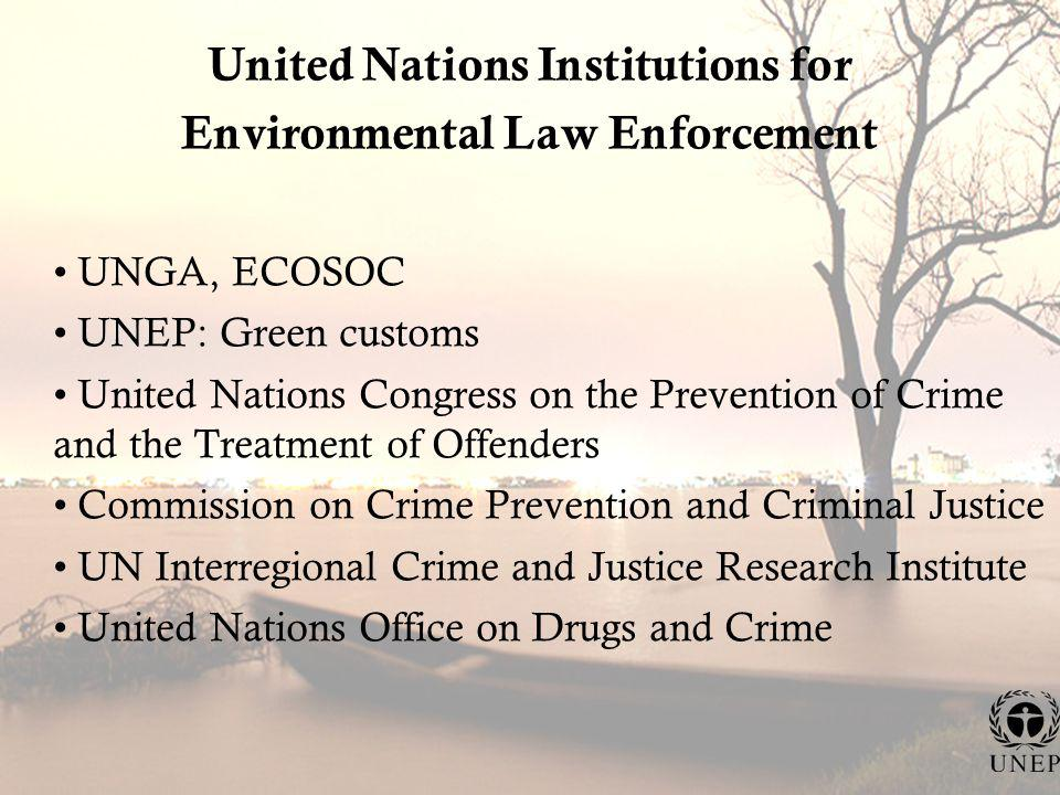 United Nations Institutions for Environmental Law Enforcement UNGA, ECOSOC UNEP: Green customs United Nations Congress on the Prevention of Crime and the Treatment of Offenders Commission on Crime Prevention and Criminal Justice UN Interregional Crime and Justice Research Institute United Nations Office on Drugs and Crime