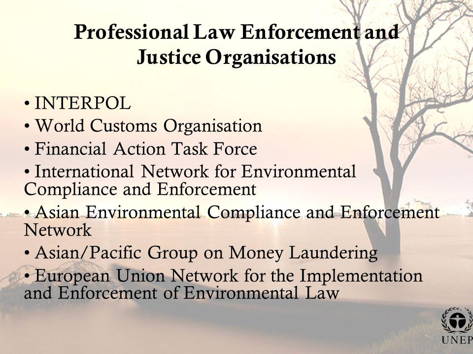 Professional Law Enforcement and Justice Organisations INTERPOL World Customs Organisation Financial Action Task Force International Network for Environmental Compliance and Enforcement Asian Environmental Compliance and Enforcement Network Asian/Pacific Group on Money Laundering European Union Network for the Implementation and Enforcement of Environmental Law