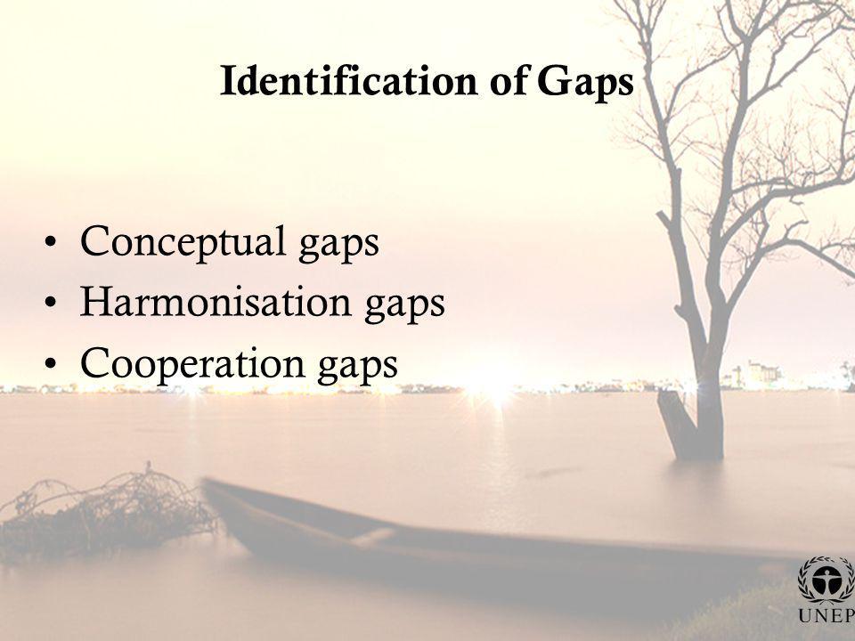 Identification of Gaps Conceptual gaps Harmonisation gaps Cooperation gaps