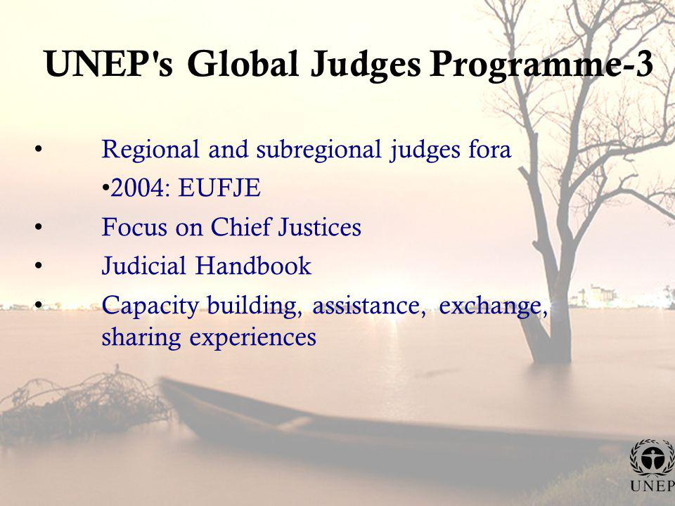 UNEP s Global Judges Programme-3 Regional and subregional judges fora 2004: EUFJE Focus on Chief Justices Judicial Handbook Capacity building, assistance, exchange, sharing experiences