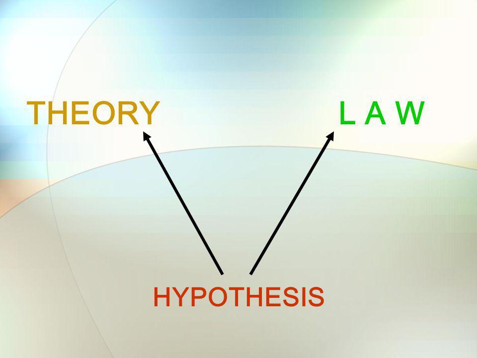 HYPOTHESIS THEORYL A W