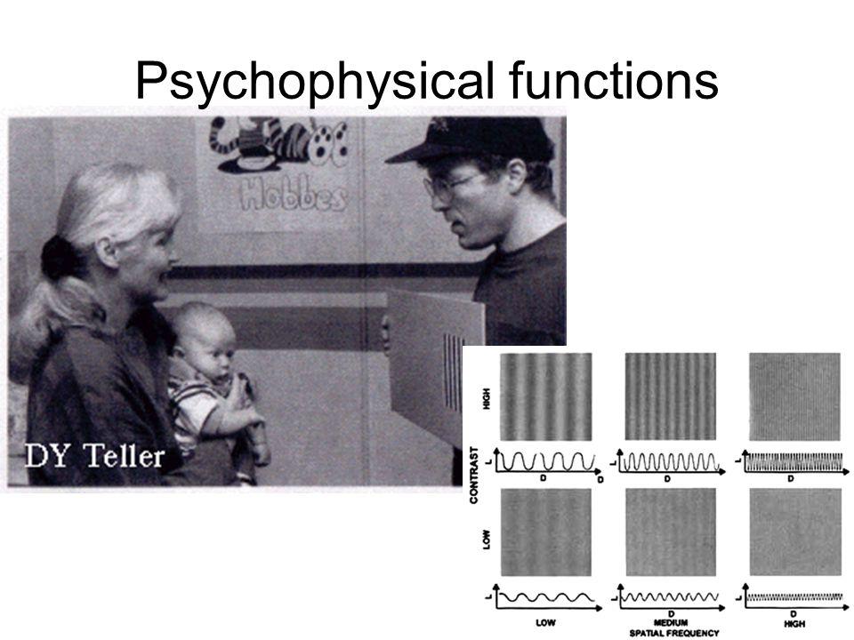 Psychophysical functions