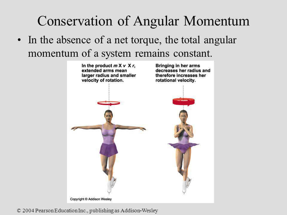 © 2004 Pearson Education Inc., publishing as Addison-Wesley Conservation of Angular Momentum In the absence of a net torque, the total angular momentu