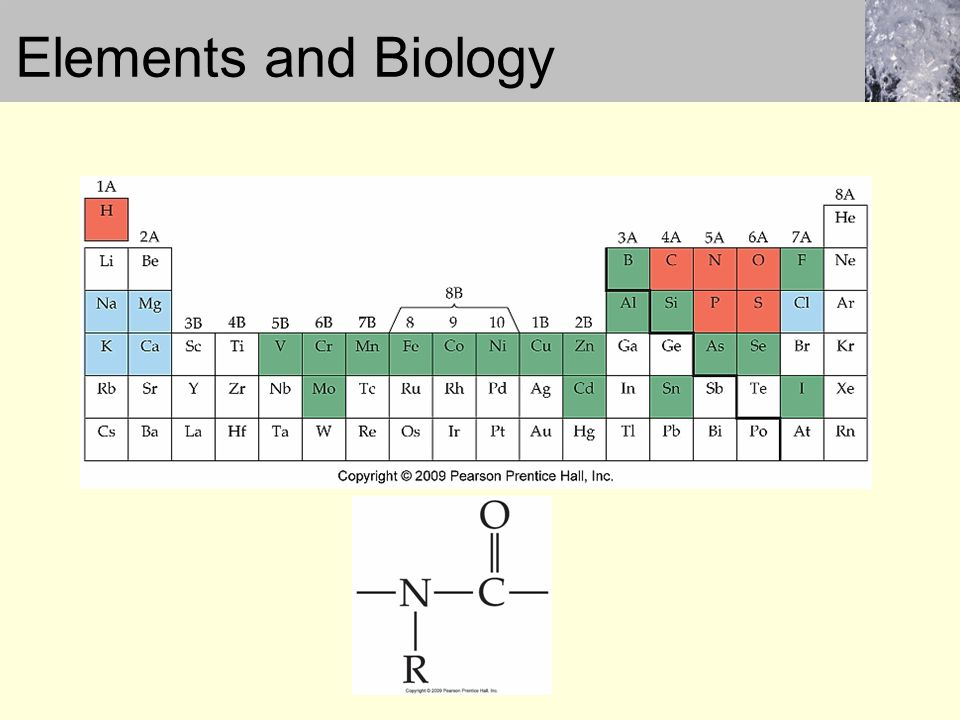 Elements and Biology