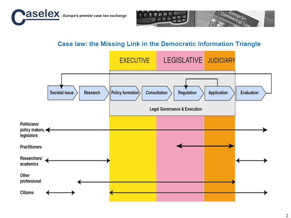 2 Case law: the Missing Link in the Democratic Information Triangle