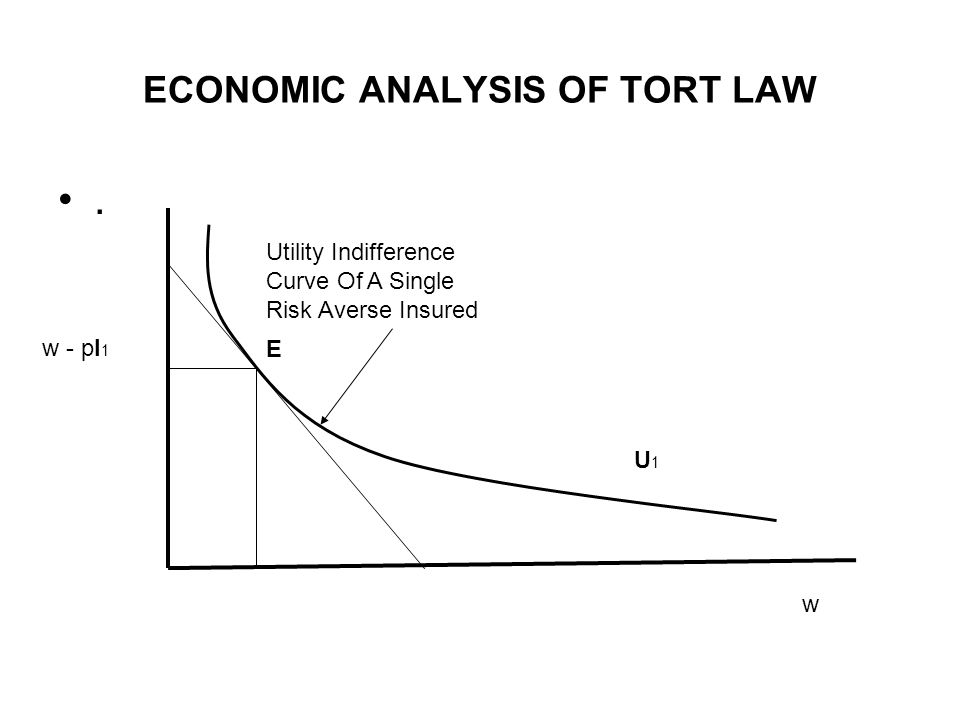 ECONOMIC ANALYSIS OF TORT LAW.