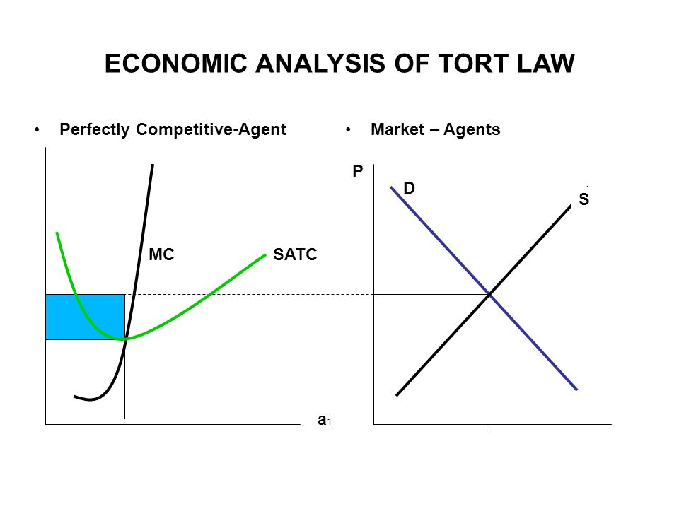 ECONOMIC ANALYSIS OF TORT LAW Perfectly Competitive-AgentMarket – Agents S S D P a1a1 MCSATC