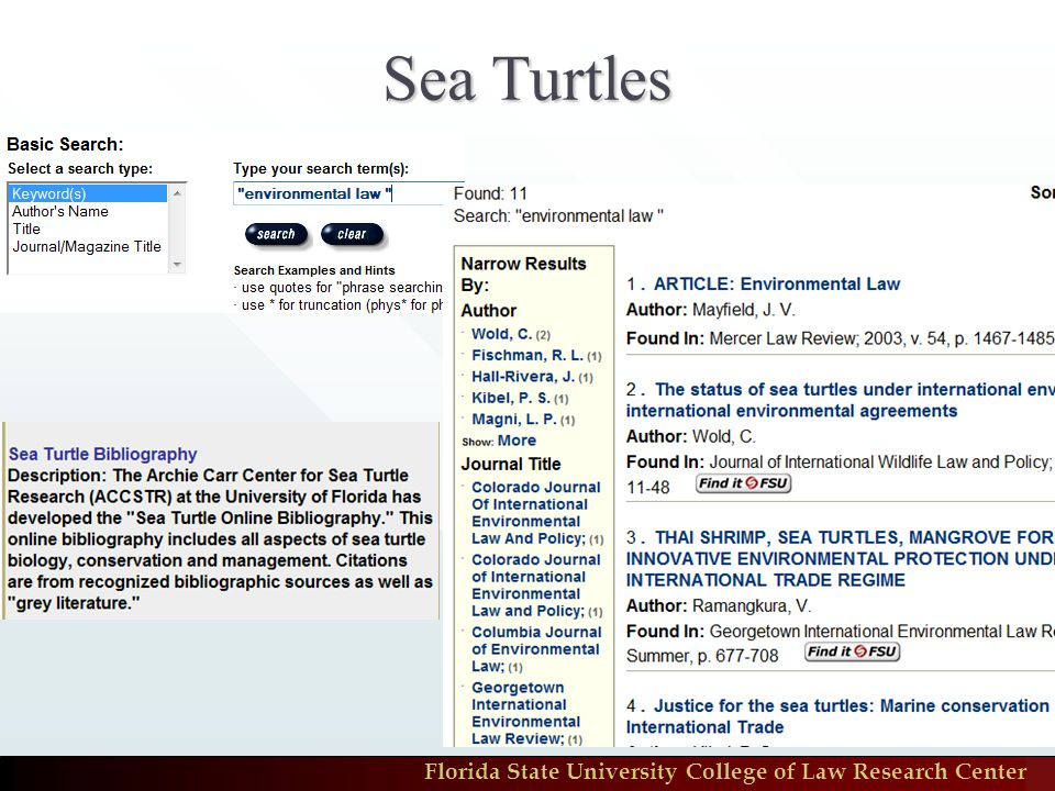 Florida State University College of Law Research Center Sea Turtles