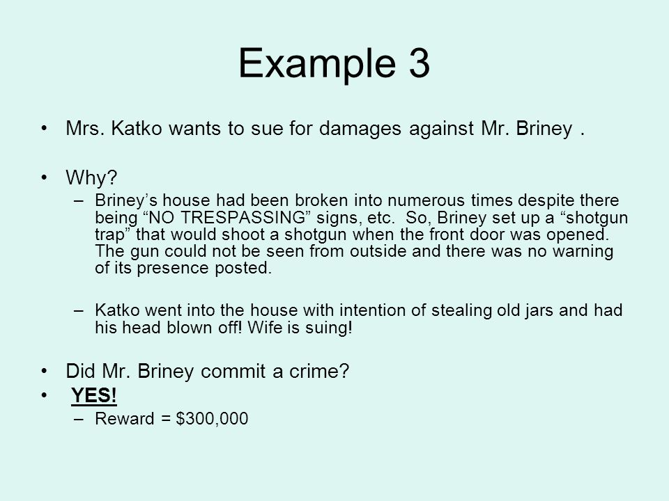 Example 3 Mrs. Katko wants to sue for damages against Mr.