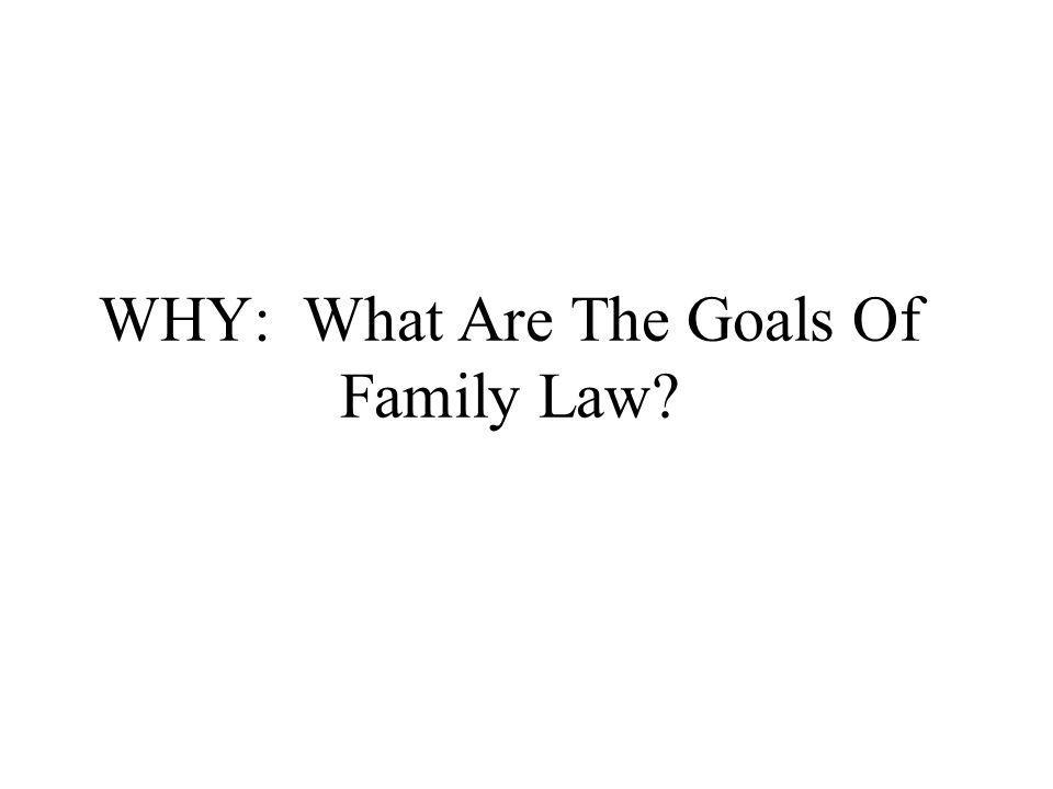 WHY: What Are The Goals Of Family Law?