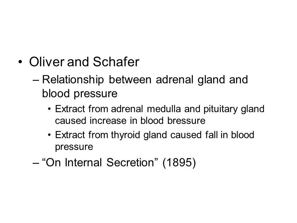Oliver and Schafer –Relationship between adrenal gland and blood pressure Extract from adrenal medulla and pituitary gland caused increase in blood bressure Extract from thyroid gland caused fall in blood pressure –On Internal Secretion (1895)