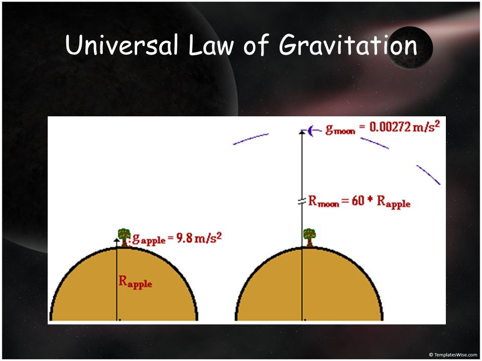 Everything pulls on everything else in a beautifully simple way that involves only mass and distance Newton did not discover gravity…what Newton discovered was that gravity is universal.