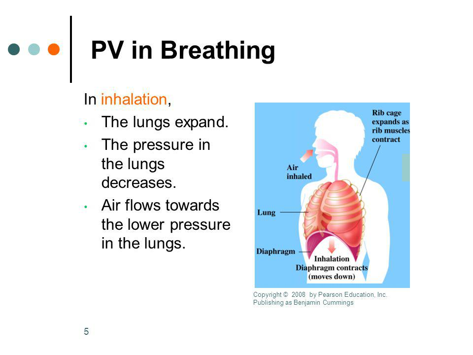 6 PV in Breathing In exhalation Lung volume decreases.