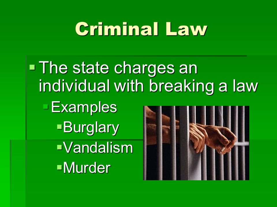 Types of Criminal Law Misdemeanors: less serious crimes usually punishable by fines and/or jail for less than one year Misdemeanors: less serious crimes usually punishable by fines and/or jail for less than one year