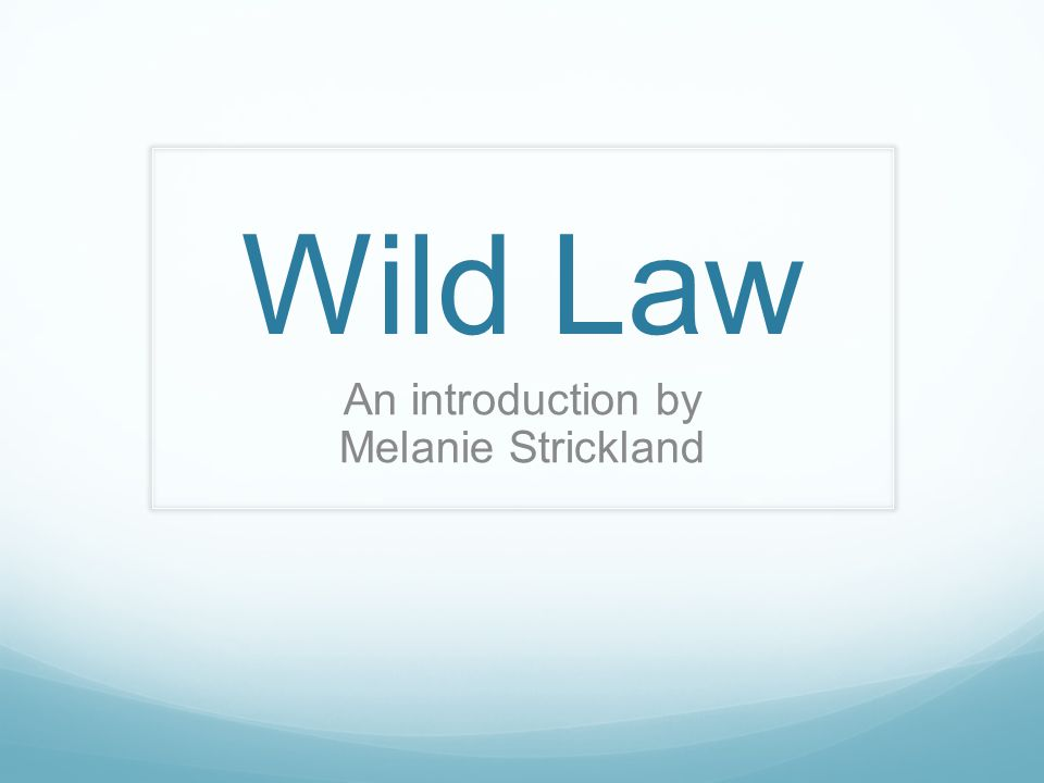 Wild Law An introduction by Melanie Strickland
