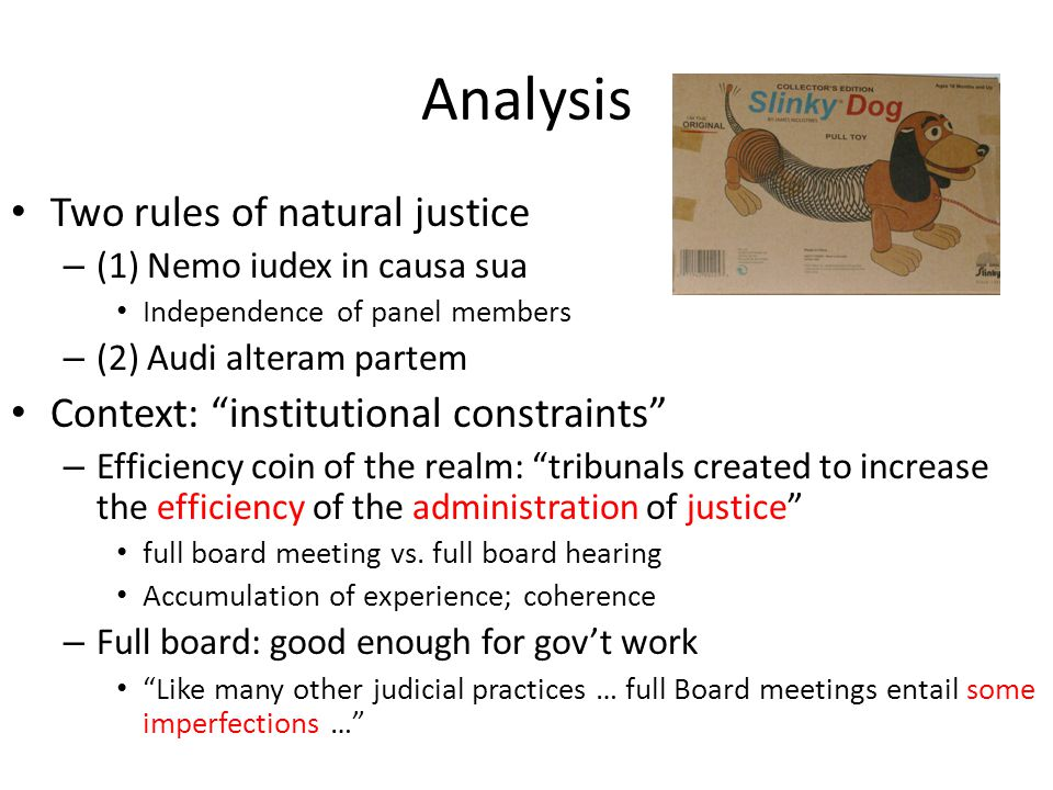 Analysis Two rules of natural justice – (1) Nemo iudex in causa sua Independence of panel members – (2) Audi alteram partem Context: institutional constraints – Efficiency coin of the realm: tribunals created to increase the efficiency of the administration of justice full board meeting vs.