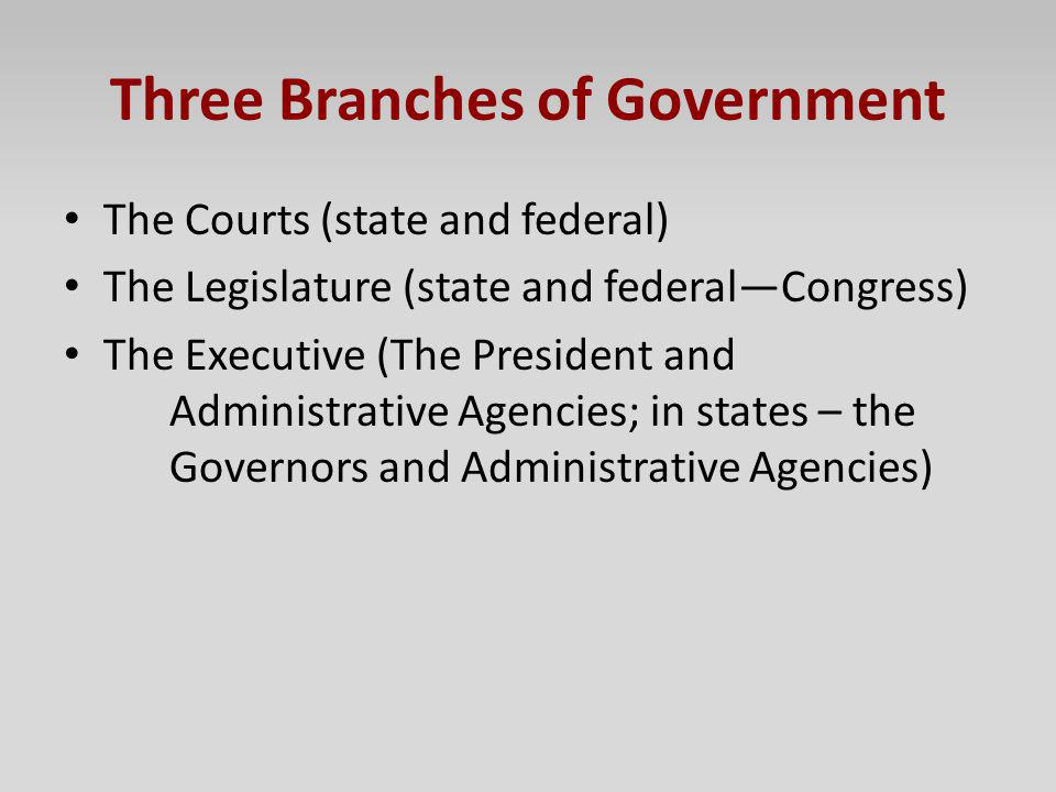 Three Branches of Government The Courts (state and federal) The Legislature (state and federalCongress) The Executive (The President and Administrativ