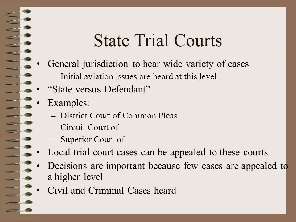 State Trial Courts General jurisdiction to hear wide variety of cases –Initial aviation issues are heard at this level State versus Defendant Examples