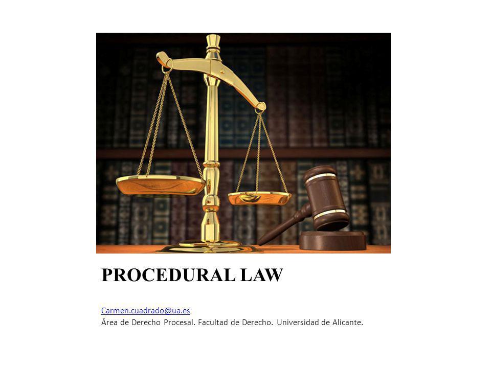 PROCEDURAL LAW Carmen.cuadrado@ua.es Área de Derecho Procesal.