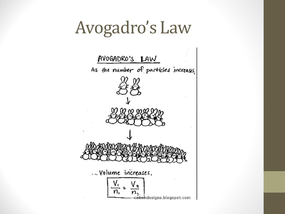 Avogadros Law
