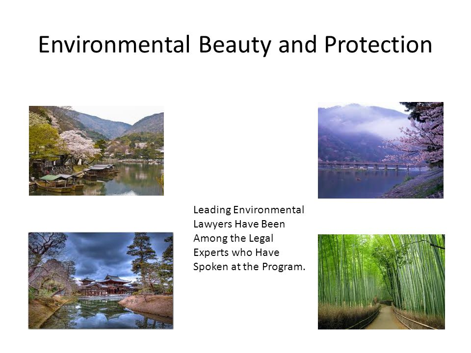 Environmental Beauty and Protection Leading Environmental Lawyers Have Been Among the Legal Experts who Have Spoken at the Program.