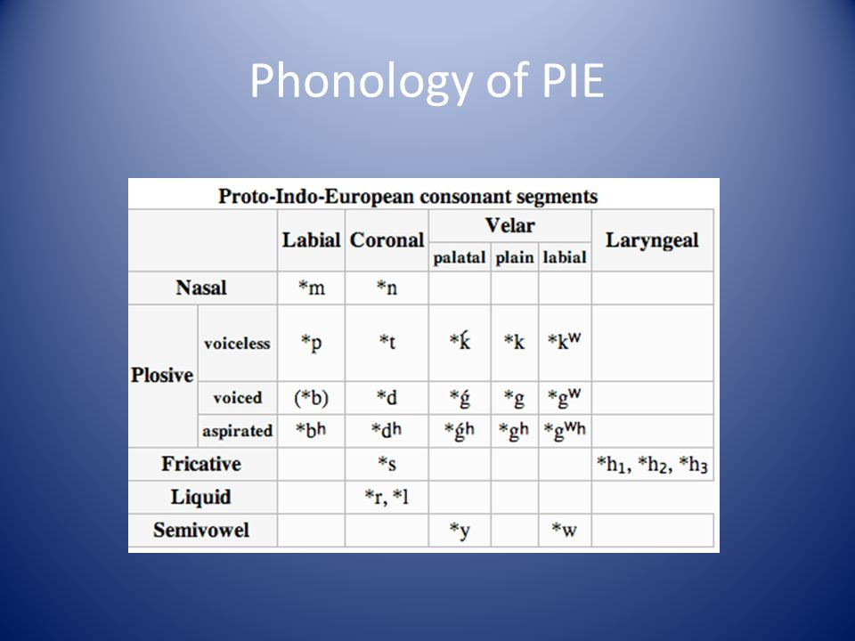 Phonology of PIE
